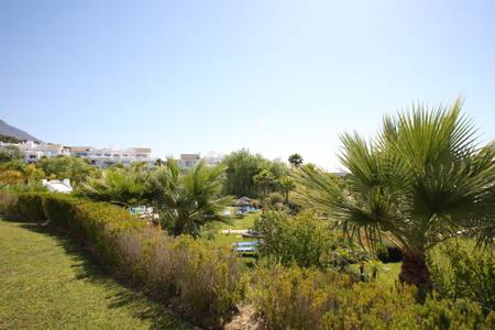Image shows lovely views of tropical gardens and pool